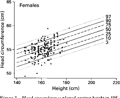 Average Head Size Chart Figure 2 From Centiles For Adult Head Circumference
