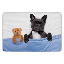bathroom bath rug kitchen floor mat carpet animal decor french bulldog sleeping with teddy bear in cozy bed best friends fun dreams image multi flannel
