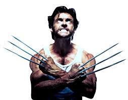 sharp wolverine claws. wolverine-01 sharp wolverine claws