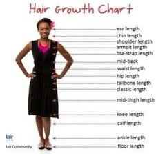 Hair Growth Length Chart Hair Growth Chart What Is Your Desired Length Hair