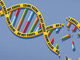 Image result for prosecutors and DNA evidence