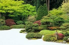 Creating Japanese Gardens Part 20