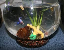 Betta Art Decorative Fish Bowl Aquarium Decoration Ideas DIY Fish Bowls That Fish Blog 55