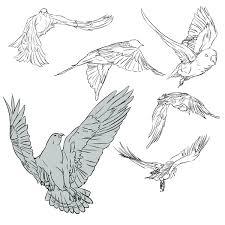 鳥の練習 赤井元赤いピアス さんのイラスト ニコニコ静画