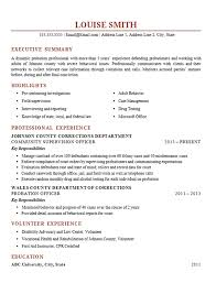 probation officer resume example