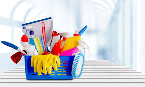 Housekeeper Services Honest And Quality Domestic Cleaning Housekeeper Services In