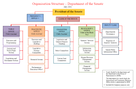 Senate Hierarchy Chart Dab 810 Scott Constable Senate Structure