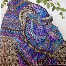 Gorilla The Menegerie Animal Portreits Adult