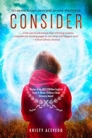 consider holo series 1 read an excerpt of this book