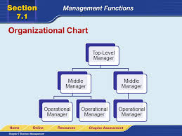 Lara Organizational Chart Read To Learn Describe The Overall Purpose Of Management