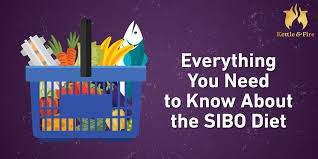 Sibo Diet Chart Everything You Need To Know About The Sibo Diet