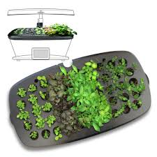 miracle gro aerogarden seed starting system for extra