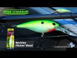 Flicker Shad Dive Chart Berkley Flicker Shad Shad Crankbait