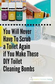 Best  Eliminate House Odors Ideas On Pinterest - Best bathroom odor eliminator
