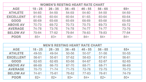 Heart Rate Averages By Age Heart Rate Zones