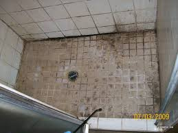 moldy shower tiles