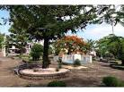 imagem de Pinheirinho do Vale Rio Grande do Sul n-6