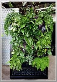 Small Picture 80 best Jardines verticales Vertical Garden images on Pinterest