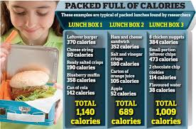 ban packed lunches so children eat healthy school dinners  lunch box