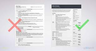 Traditional Resume Template Free Or Entry Level Resume Sample And