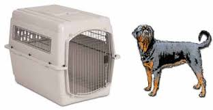 Dog Cage Size Chart Petmate Sky Kennel