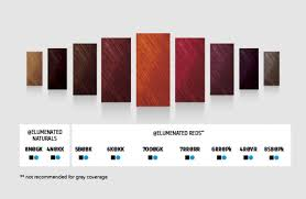 Goldwell Colour Chart 2018 Goldwell Red Collection