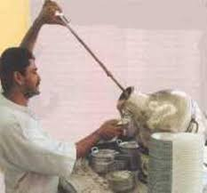 بمسابقه رمضان(مصر images?q=tbn:ANd9GcQ