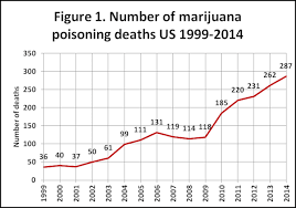 Fatal Marijuana Overdose Is Not A Myth Drug Rehab Options