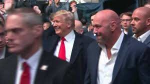 Trump Receives Boos And Cheers At Ufc Fight