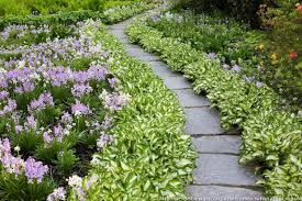 A Lovely and Low Care Garden Path. Garden Plant Borders PDF