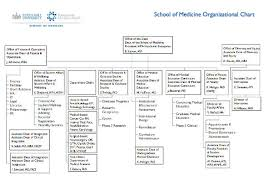 School Of Medicine Organizational Charts - Seton Hall University