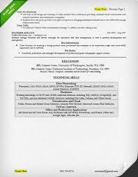 Ceo Resume Examples Interesting Executive Resume Examples Writing Tips CEO CIO CTO
