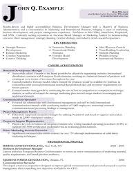 Business Development Executive Resume Beauteous Resume Samples Types Of Resume Formats Examples Templates