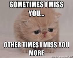 sometimes i miss you... other times i miss you more - Super Sad ... via Relatably.com