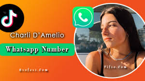 Tiktok Star Charli D'Amelio Whatsapp Number, Phone Number, Email ID, House  Address And Free Wallpapers