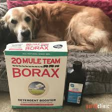 Borax for Mange - Ted's Remedy for Demodectic and Sarcoptic Mange