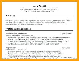 Sample Of Resume Simple Resume Summary Examples Best Sample Resume
