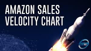 Amazon Sales Rank Chart 2019 Pdf Amazon Sales Velocity Chart Seller Essentials