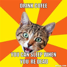 Bad Advice Cat Meme Generator - DIY LOL via Relatably.com