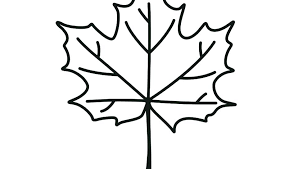 coloring pages maple leaf coloring page pages leaves printable sheet autumn free