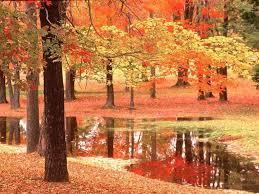 Image result for octobre