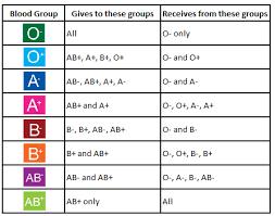 Baby Blood Type Chart Blood Group Basics Irish Blood Transfusion Service
