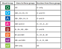 Blood Group Donate And Receive Chart Blood Group Basics Irish Blood Transfusion Service