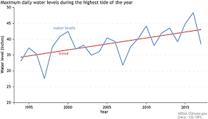 The Sea Level Threat Exemplified By Miami And Venice Book