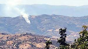 İzmir'in Kiraz ilçesinde yangın çıktı • Haberton