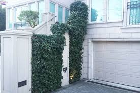 18 Valuable Vines  HGTVWall Climbing Plants For Shade