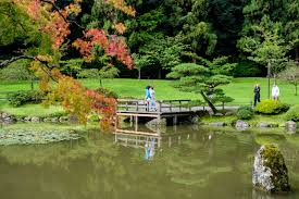 visitors near the water at the seattle japanese garden photo by david ok