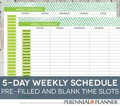 Printable Hourly Weekly Schedule Daily Schedule Printable Editable Times Half Hourly Weekly Etsy