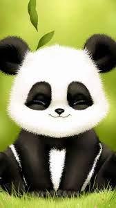 60+ Baby Panda Wallpapers: HD, 4K, 5K ...