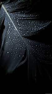 Black Phone HD Wallpapers - Wallpaper Cave